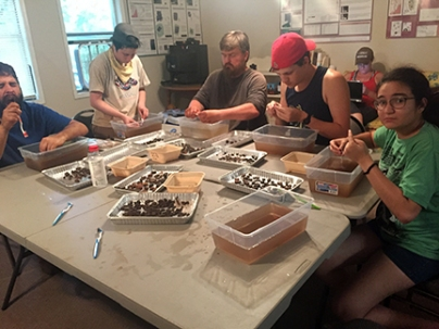 Students washing artifacts. Various levels of enthusiasm pictured.