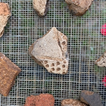 Zoned punctated sherd